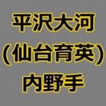 仙台育英・平沢大河(ドラフト2015候補)の動画をチェック!