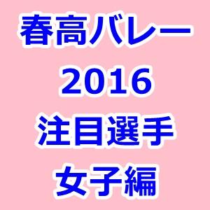 春高バレー 2016 注目選手 女子