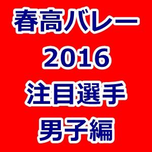 春高バレー 2016 注目選手 男子