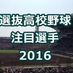 選抜高校野球の注目選手(2016)ランキング!藤嶋の投打に期待!